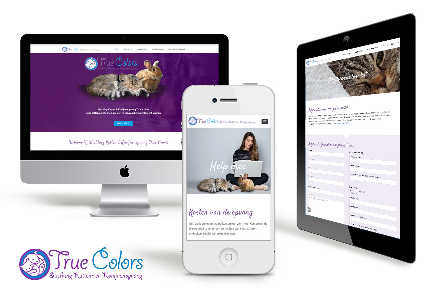 Webdesign-stichting-treucolors-grimmstudio